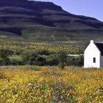 Enjo-Nature-Farm-Biedouw-Valley